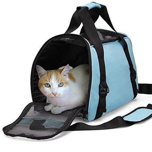 переноска для кошки.jpg