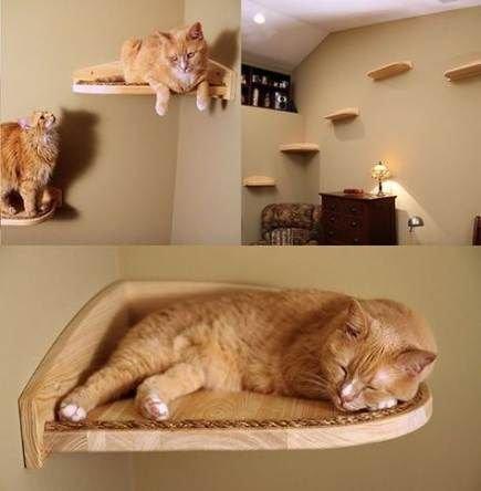 полочки для кошек.jpg